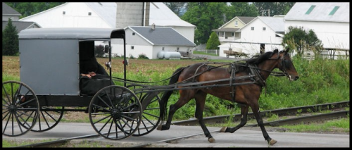 Lancaster Pa Dutch Amish Country